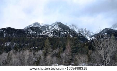 Winter Mountain in Utah #1336988318