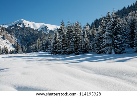 Winter mountain landscape and blue sky
