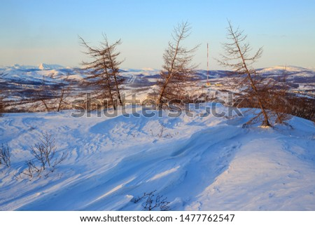 Winter mountain landscape. Larch on a snowy slope. In the distance there is a television antenna on top of the hill. Cold winter weather. Magadan region, Siberia, Far East of Russia. #1477762547