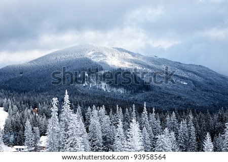 Winter mountain valley landscape. Great Smoky Mountain National Park, Tennessee, USA
