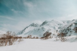 Winter mountains-space for text, frosty blue sky over the snowy peaks of rocks and mountains, dry grass grows for wild animals, a place for skiing and snowboarding, as well as on cheesecakes,fresh air