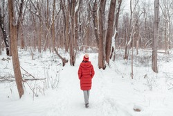 Winter nature walk woman walking in snowy forest trail outdoors. View from behind of woman in long red coat.