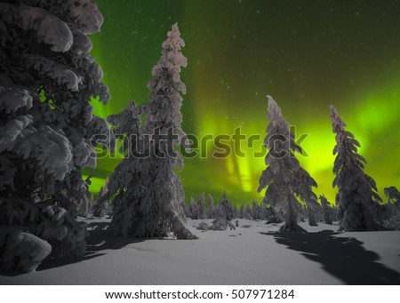 Winter night landscape with forest and polar northern lights. Canada landscape. Night landscape. Canada, America, Canada, America, Scandinavia, Canada, Canada, Canada landscape, landscape, landscape