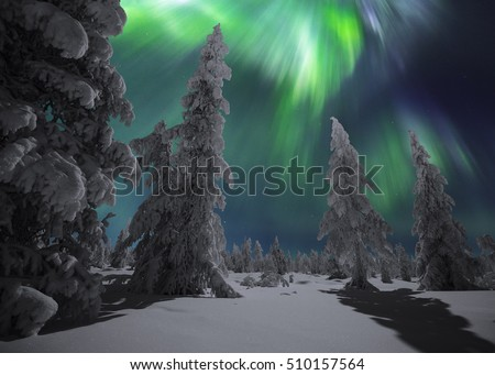Winter night landscape with forest and polar northern lights. Winter night landscape forest and polar northern lights. Canada landscape. Night landscape. Canada, America, Canada, landscape, landscape