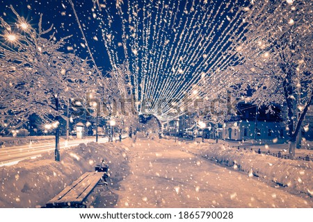 Photo of  Winter night park with lanterns and Christmas decorations in heavy snowfall.