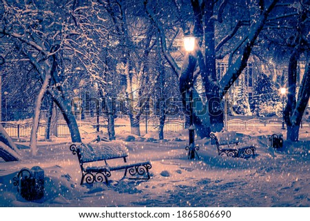 Photo of  Winter night park with lanterns, benches, pavement and trees covered with snow in heavy snowfall.