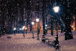 Winter night park with lanterns, pavement and trees covered with snow in heavy snowfall.