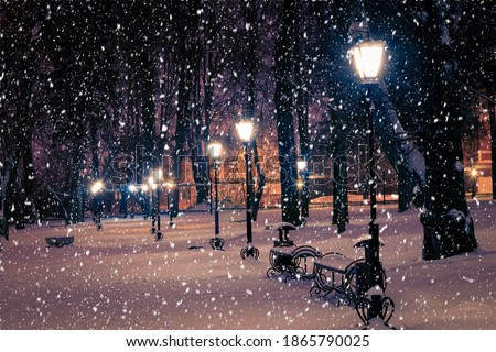 Photo of  Winter night park with lanterns, pavement and trees covered with snow in heavy snowfall.