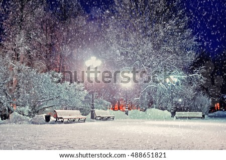 Winter night. Winter landscape - winter evening in the night snowy park with benches under winter snowfall. Night winter park landscape. Winter park under falling snow -winter view in vintage tones