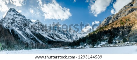Winter Outdoor Landscape