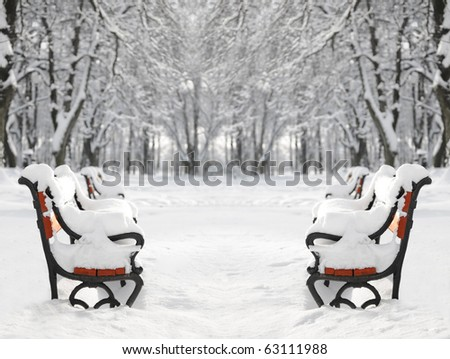 Winter park with red benches covered with snow