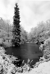 Winter pond in a forest near Iserlohn Sauerland Germany with frozen ice water surface, snow covered trees and bushes. Calm and frosty atmosphere with black and white contrast.