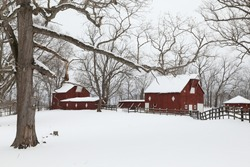 Winter red barns