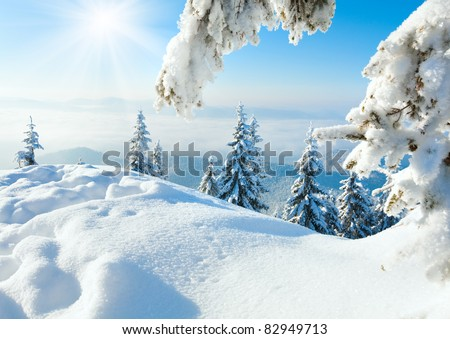 Winter rime and snow covered fir trees on mountainside