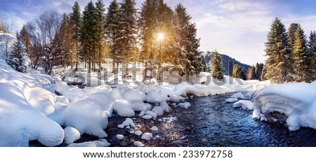 Winter river and forest in the mountains on sunny day