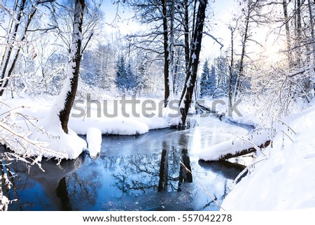 Winter river in winter forest landscape #557042278