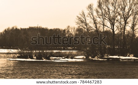 Winter river. River background. River and trees.  #784467283