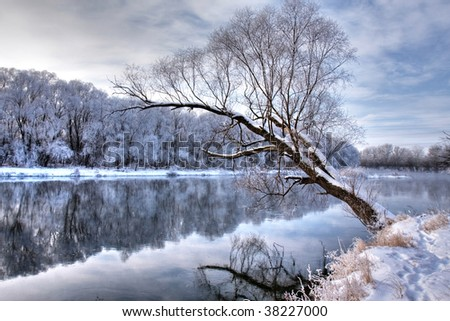 winter river with a tree standing alone