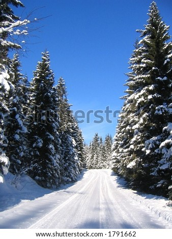 Stock Photo Winter road