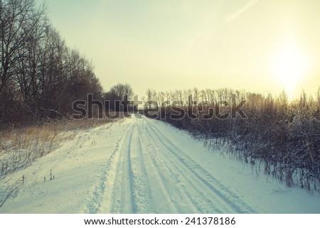 Winter road forest field landscape