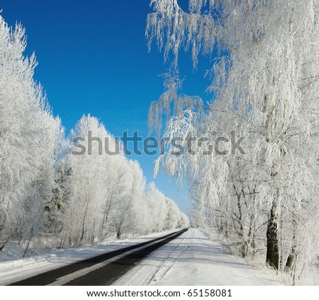 Winter road in frosty day.  Snowy track with frozen tree. Winter landscape with snowy highway.
