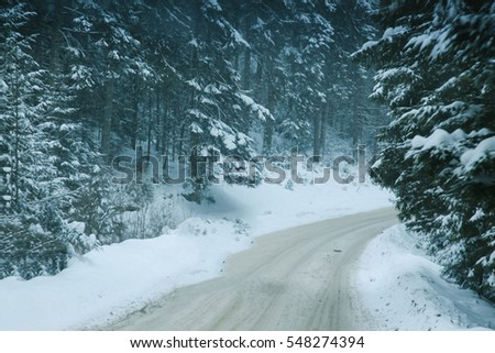 Winter road in winter forest #548274394