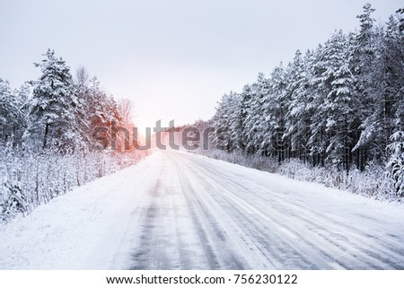 Winter road through the forest #756230122