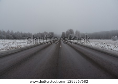 winter road with poor visibility in Sweden #1288867582