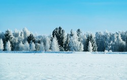 Winter road with snow in Finland. Landscape of Lapland in Europe. Forest along highway during ride. Snowy trip. Cold driveway. Driving in Finnish motorway on north Rovaniemi village. View with tree