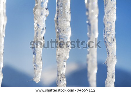 winter scene and landscape with ice and snow