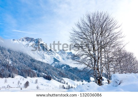 winter scene in Austrian Alps in nice winder day