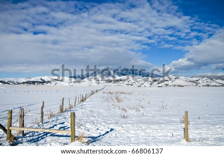 Winter Scene in Montana with the Bridger Mountains in the Background