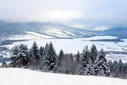 winter scene in mountains, Slovakia