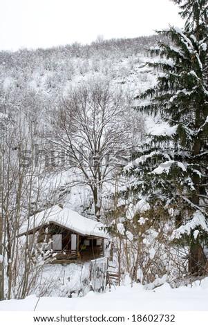 Winter scene with a little hut