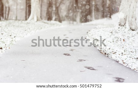 Winter Scene with blurred nature background. Footprints in the snow in the City Park. Winters blurred background. #501479752