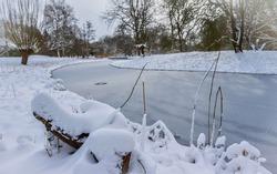 Winter Scenery Arboretum Heempark Delft