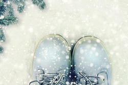 Winter shoes on the snow.