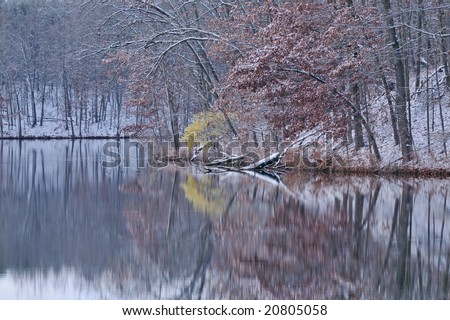 Winter shoreline with fresh snow and reflections of trees, Eagle Lake, Fort Custer Recreation Area, Michigan, USA