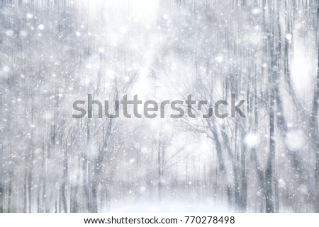 winter snow background / blurred background in city park, snowfall in forest, tree branches and bushes covered with snow, abstract snowflakes in blur, christmas walk