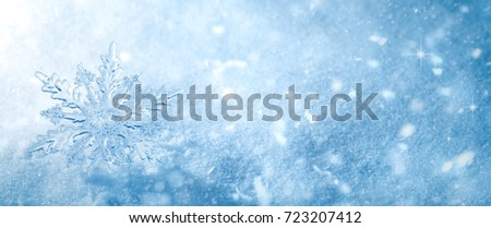 Winter snow background.Snowflake Closeup. #723207412
