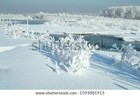 Winter snow covered nature landscape. Snow covered winter nature scene. Winter snow scene