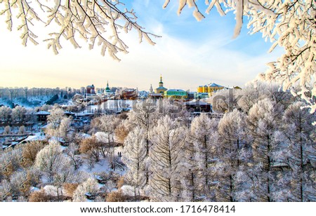 Winter snow covered tree branches view town. Winter town landscape. Snow covered tree branches in winter town. Winter town trees view