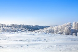 Winter snow forest and field landscape, white trees covered with hoar frost, hills, snow drifts on bright blue sky background, New Year or Christmas greeting card, calendar, banner, border concept