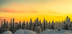 Winter snow forest at dawn panorama. Winter snow forest dawn panorama. Sunrise winter snow forest panorama. Sunrise winter forest snow dawn panoramic landscape