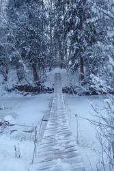 Winter snow forest bridge view. Forest bridge in winter snow season.