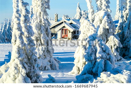 Winter snow forest hut view. Forest house in winter snow woods. Winter snow forest house view. Winter snow forest hut