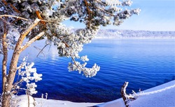 Winter snow forest lake water view
