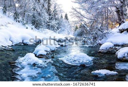 Winter snow forest river landscape. Forest river in winter. Winter forest river flow. Winter snow forest river flowing
