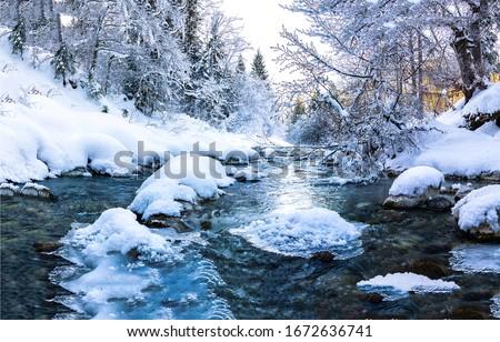 Winter snow forest river landscape. Forest river in winter. Winter forest river flow. Winter snow forest river flowing