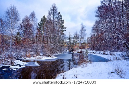 Winter snow forest river view